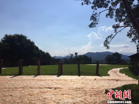 龙泉市兰巨现代农业园区观星露营基地 饶雨蒙 摄