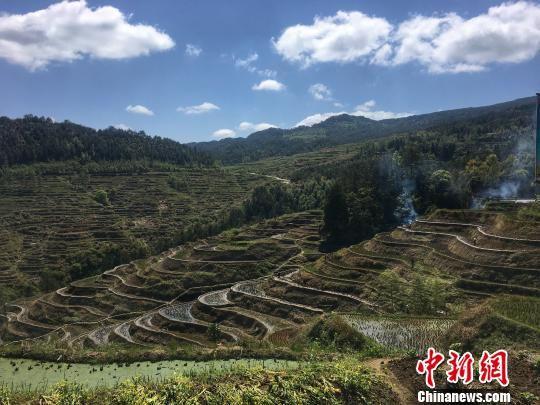 天宸农业公园项目梯田风光 罗媛安 摄