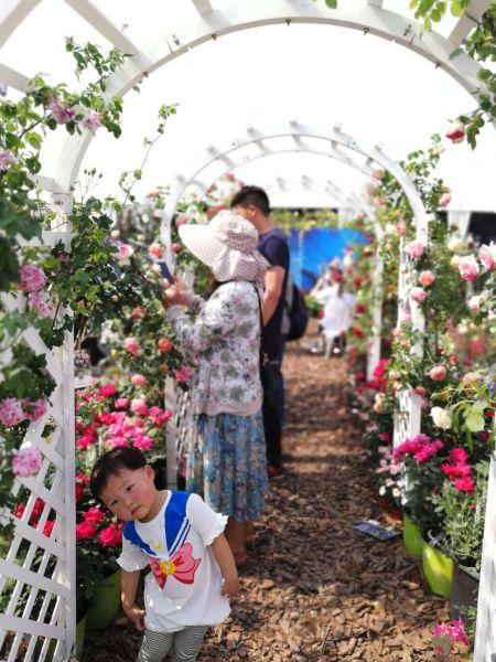 世界花园大会,一位活泼的小孩,迎s着记者的镜头摆起姿势 胡丰盛摄
