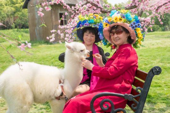 """图为:老奶奶们身着百花服饰变身""""花仙子""""。象山影视城提供"""
