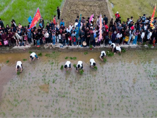 吸引了数千游客参观体验 衢州宣传部提供