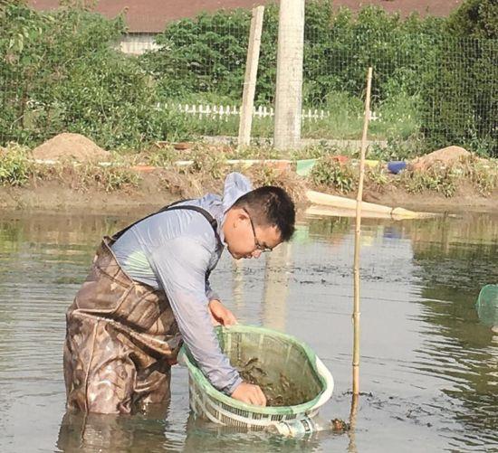 图为:程泽远在水塘打理养殖的青虾。 朱宇飞 摄