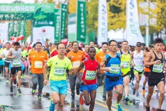 5000名跑友用脚步丈量源头美景。开化宣传部提供