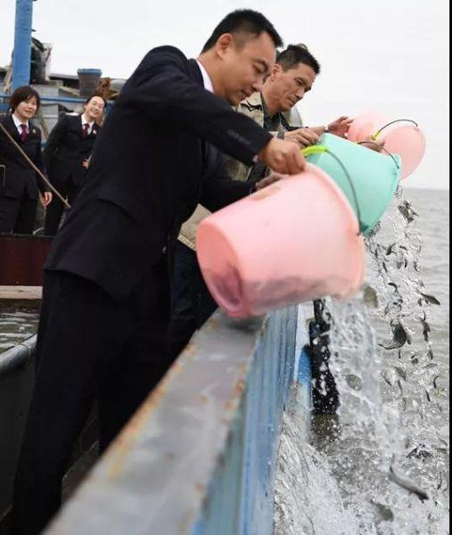 非法捕捞难逃生态修复一男子补偿1.5万鱼苗放归东海